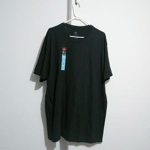 Hanes lot of 2 t shirt